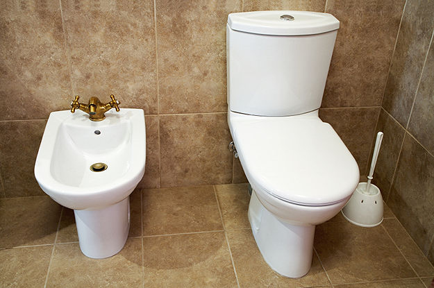 Non Electronic Bidet And Toilet In A Fancy Bathroom How Do You Use This