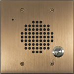 Bronze Flush Mount Door Box